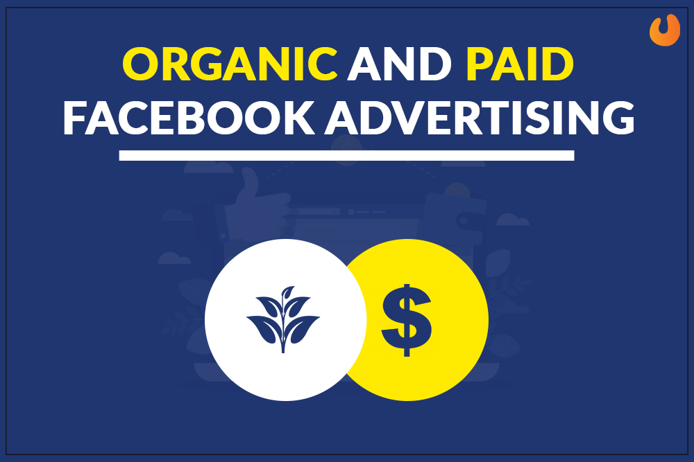 Organic and Paid FB advertisement